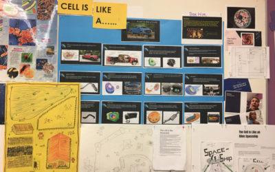 Creativity as a teaching tool